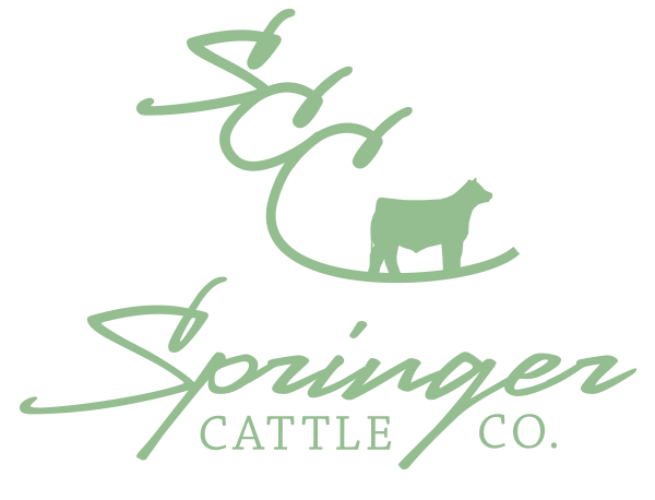 Springer Cattle Co